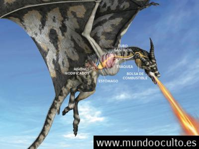 ¿Cómo hubieran lanzado fuego los dragones?