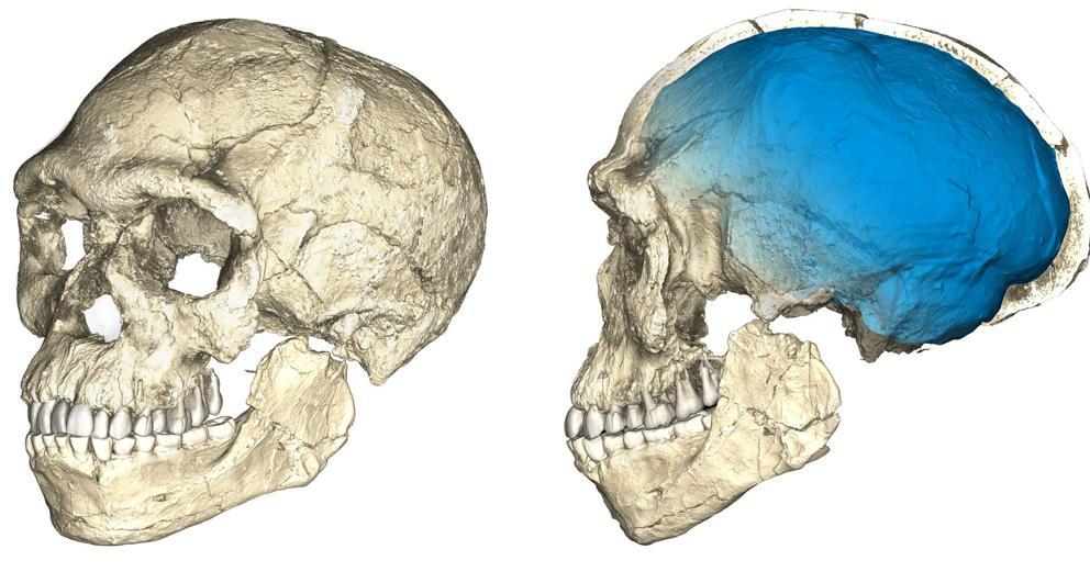 Encuentran en Marruecos los fósiles de homo sapiens más antiguos datados hasta la fecha.
