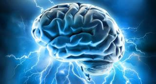 Lectura De Mente: La Nueva Tecnologia Que Procesa Pensamientos Humanos