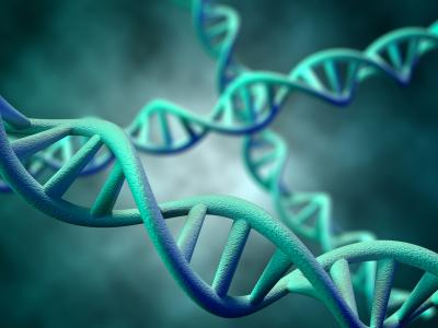 Desarrollan una técnica para clonar miles de genes al mismo tiempo
