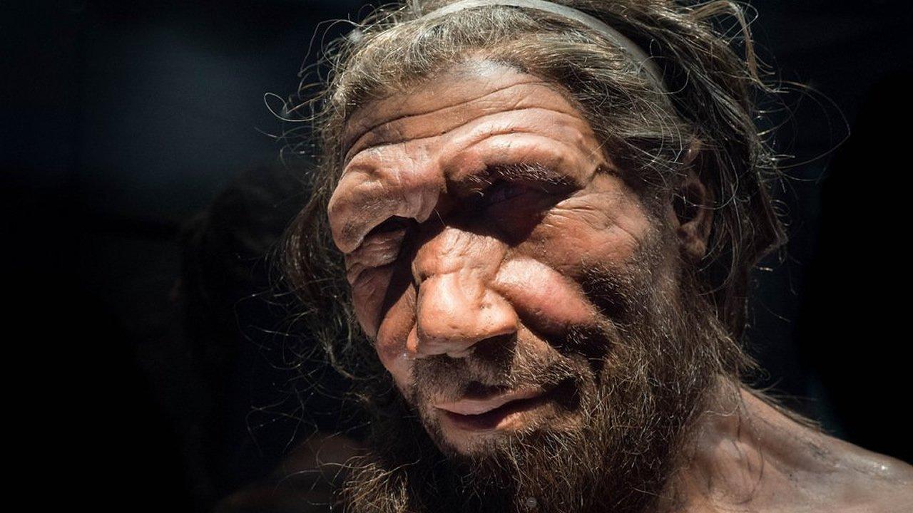ADN de un hueso de Neandertal contiene evidencia de una tribu perdida de humanos