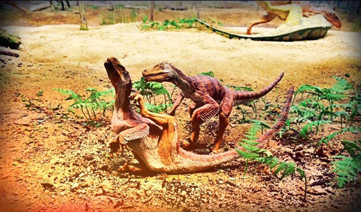 Dinosaurios cubiertos de plumas (Legendz Collective)
