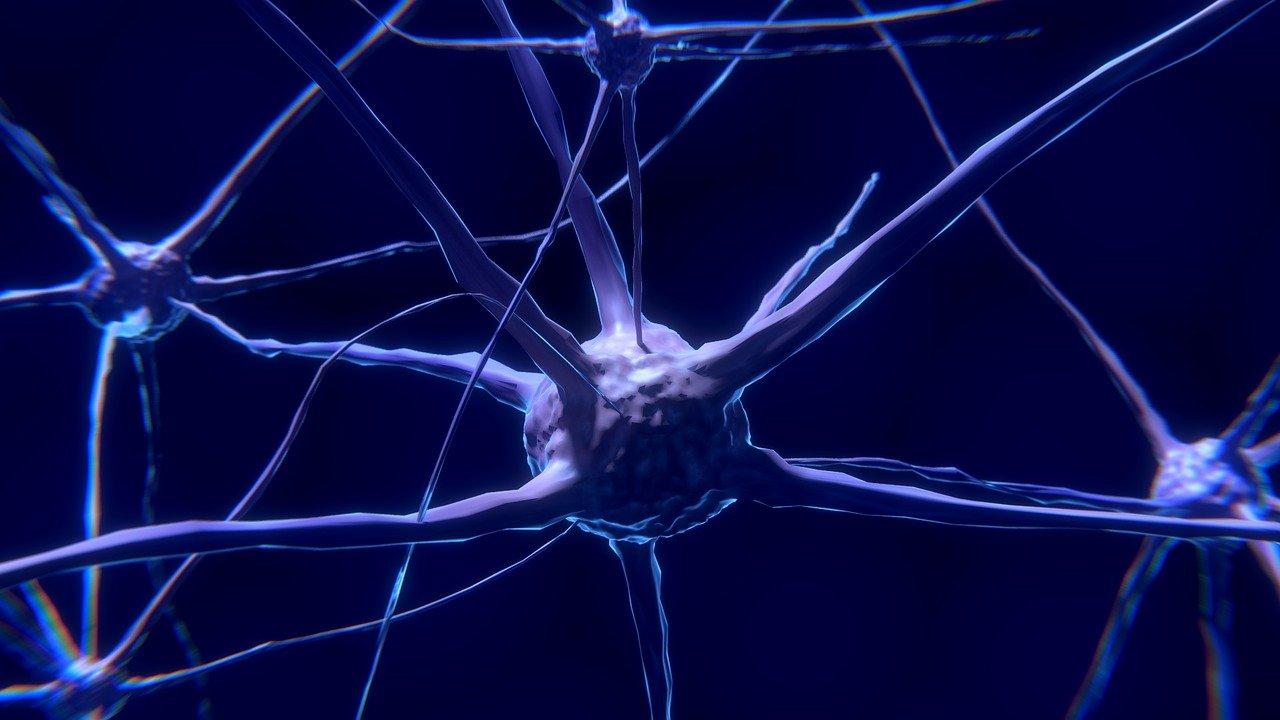 Estudio establece que nanotubos de carbono podrían reconectar neuronas