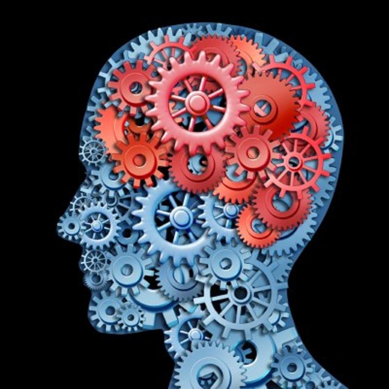 Los cerebros emocionales son físicamente distintos de los racionales.
