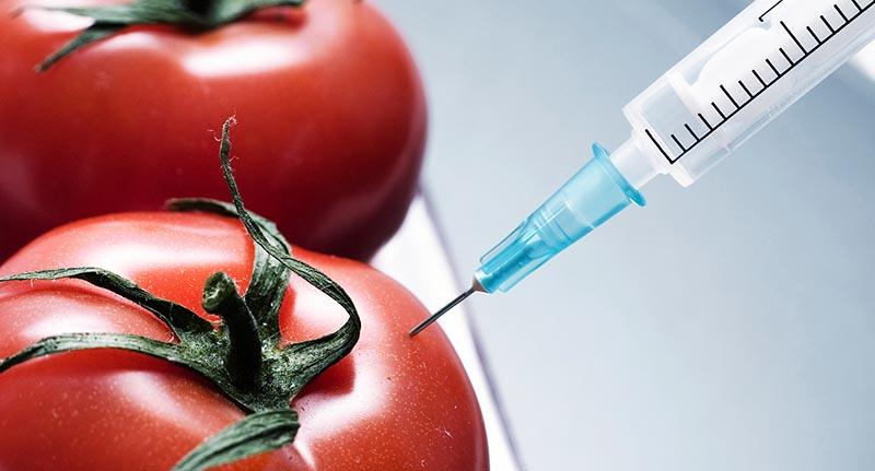 """La mayoría de los productos estadounidenses con el rótulo """"natural"""" contienen OGM"""