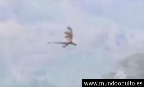 Captan dragón sobrevolando china