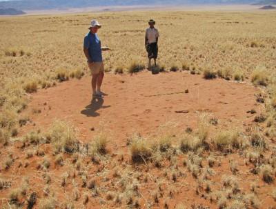 Los misteriosos círculos en Namibia