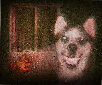 "Sonríe para ""Smile Dog"""