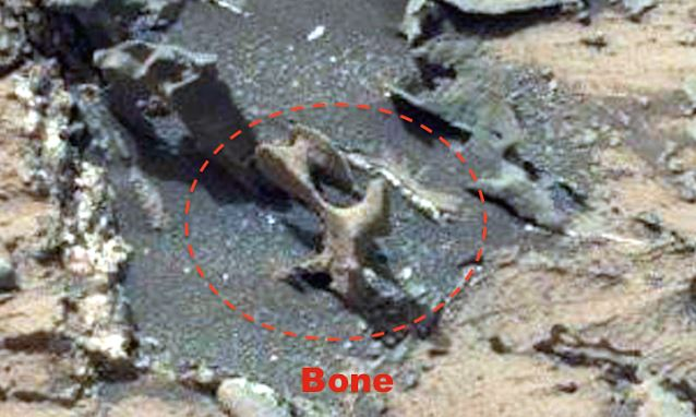 La NASA retira foto que muestra huesos en marte.