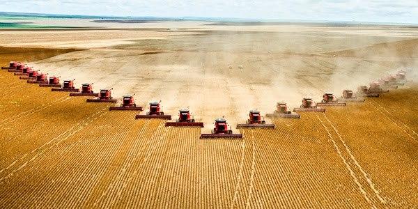 Una manera de afrontar el cambio climático: reintroducir las prácticas de agricultura ecológica