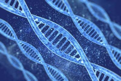 Genofagia: ¿un arma de extinción?