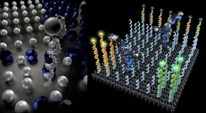 Un robot de ADN mueve moléculas