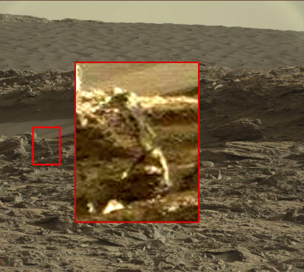 La prueba: ¿Es esta la imagen de un ser vivo en Marte?