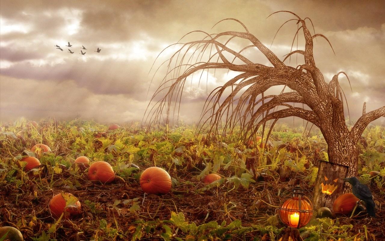 Resultado de imagen de samhain