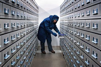 """""""El Pentágono, Google, Microsoft, China y Rusia trasladaron sus equipos, memorias y semillas a altamar, Alaska y Siberia""""."""
