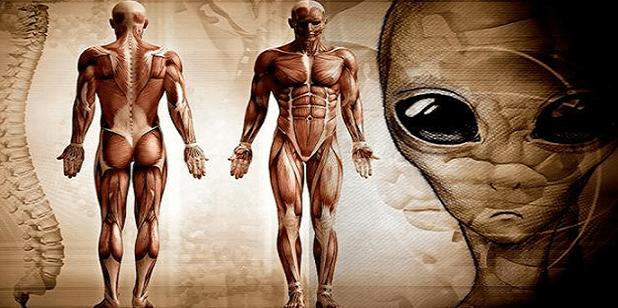 Científicos concluyen que los humanos son EXTRATERRESTRES y fuimos traídos a la Tierra