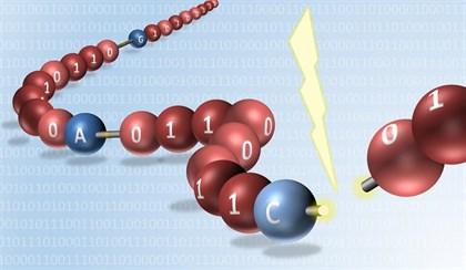 Reproducen datos grabados a escala molecular sintética
