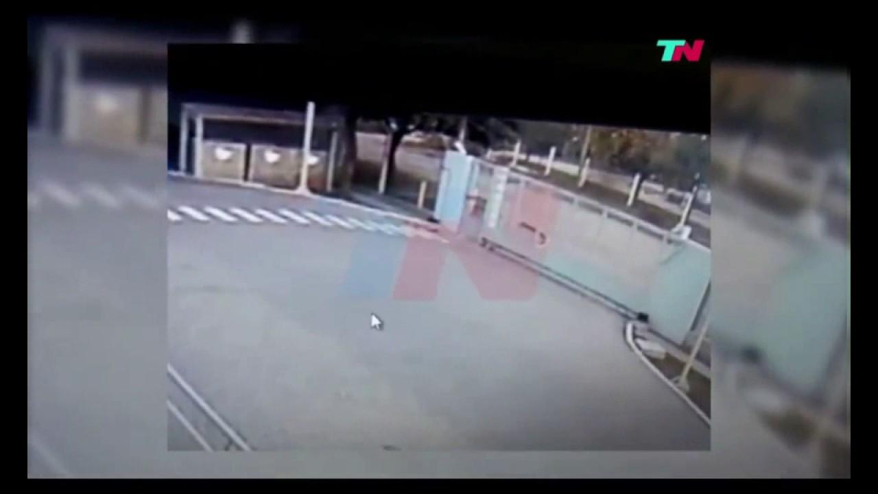 Graban a supuesto perro fantasma en Argentina; y genera diversos comentarios