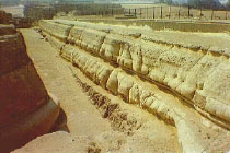 Antiguos misterios y orígenes humanos