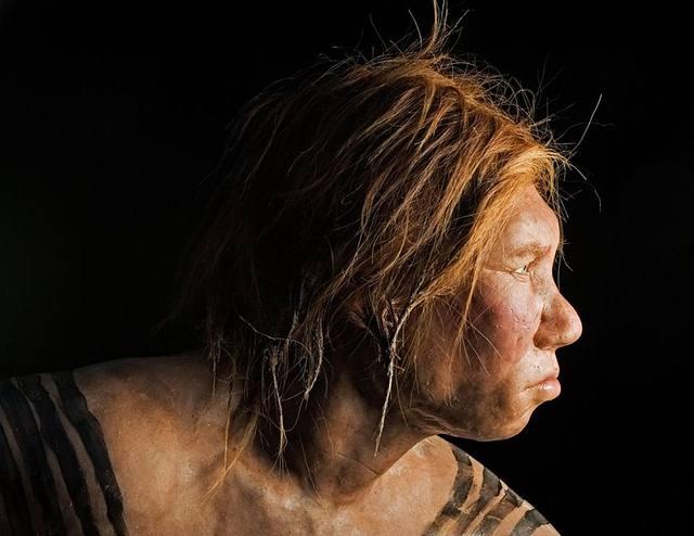 Tenemos mayor cantidad de ADN neandertal de lo que se creía