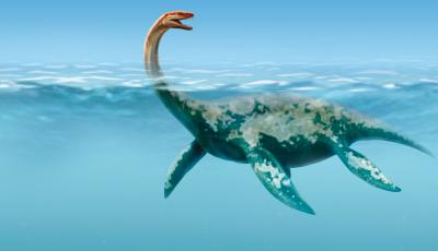 Dinosaurios y su extinción por los humanos