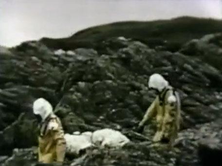 Operación Vegetariano: el día que Churchill comenzó a prepararse para la Guerra Biológica… y dejó inhabitable una isla escocesa