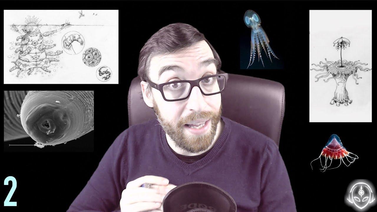 ¿Cómo evolucionan los extraterrestres? ¡INCREÍBLE! (Parte 2)
