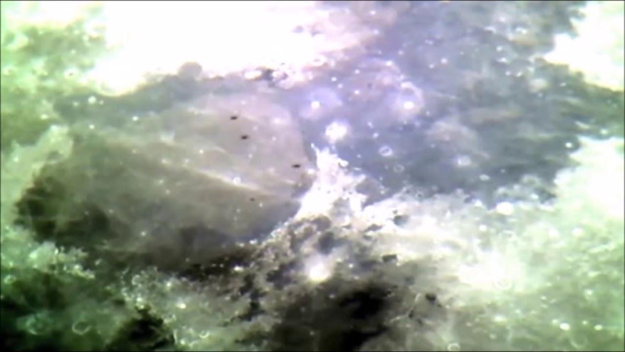 ¿Flota de OVNIs volando en formación pasan frente a la Luna?