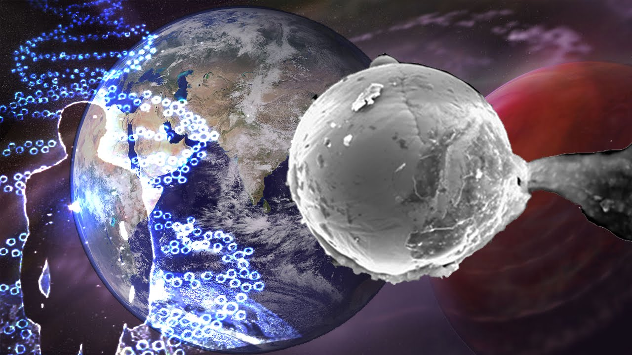 Panspermia se confirma que la vida llegó del espacio