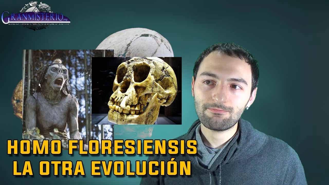 Teorias sobre la otra evolución del Homo Sapiens – El homo Floresiensis (El hobbit REAL)