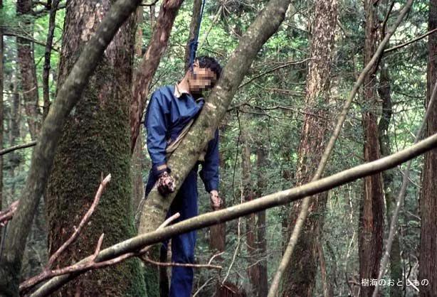 Aokigahara Jukai, el bosque de los suicidios