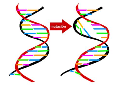 el fin de la teoria de darwin 1 - El fin de la teoria de Darwin?