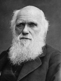El fin de la teoria de Darwin?
