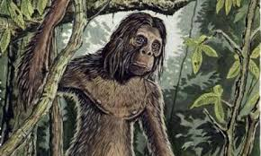 Orang Pendek, hominido en Sumatra.