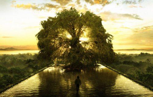 ¿Sabías que hay un Árbol que Sostiene toda la Vida?