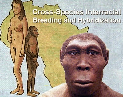 Los Seres Humanos Modernos son una Especie Híbrida