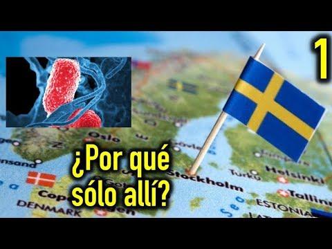 ¿Qué está pasando en Suecia? (Parte 1)