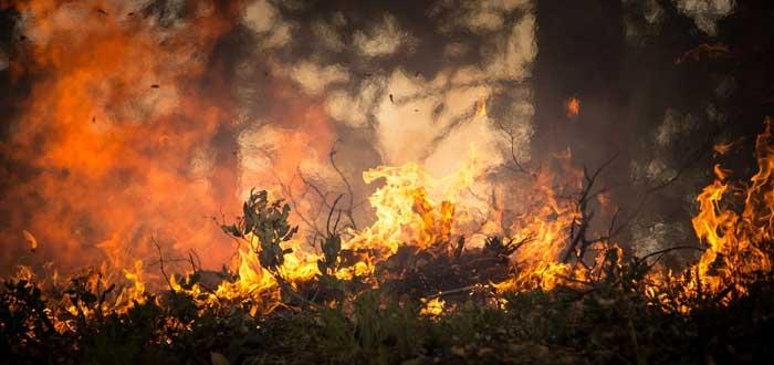 La tormenta de fuego que hace 12.800 años arrasó parte de la Tierra