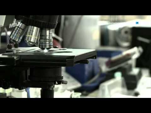 Alienígenas Caso Abierto HD 1x06 - Plagas Extraterrestres