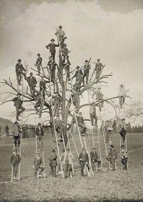 La teoría del implexo: el gran árbol genealógico de la humanidad.