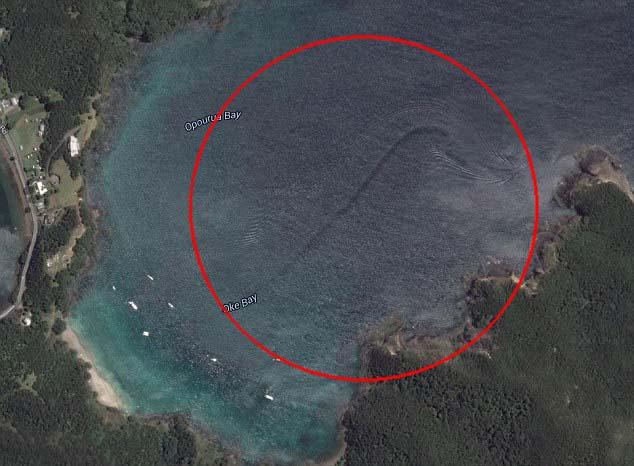 Descubren una misteriosa criatura en la costa de Nueva Zelanda a través de Google Earth