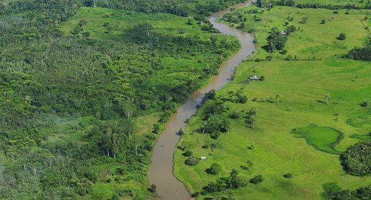 El amazonas estuvo habitado sugiere nueva evidencia hallada