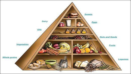 La pirámide nutricional de la OMS nos ha mentido por años – La dieta baja en carbohidratos y alta en grasas es la ideal