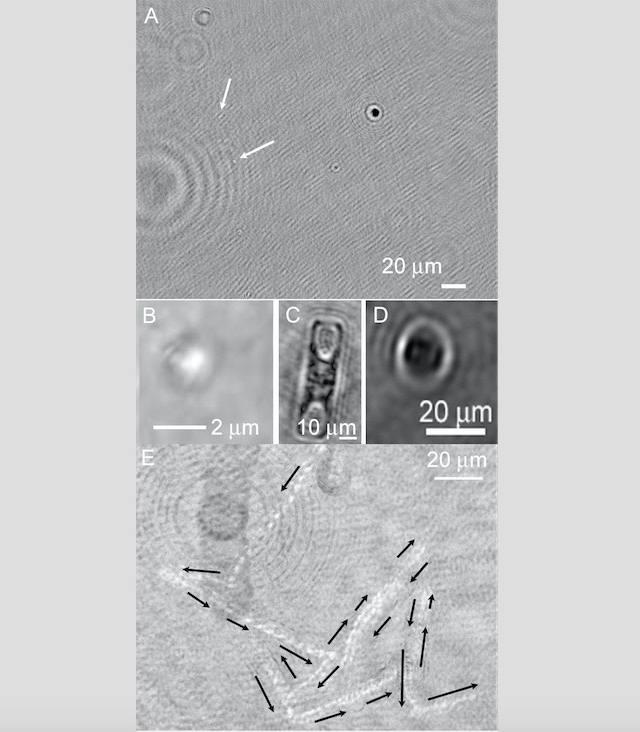 La prueba de vida extraterrestre podría registrarse como holograma