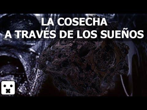 LOS EXTRATERRESTRES NOS COSECHAN A TRAVES DE LOS SUEÑOS
