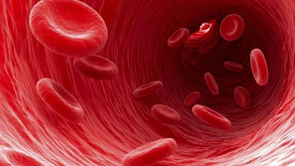Un estudio demuestra que reemplazar sangre vieja con una más joven puede mantener la juventud