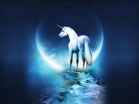 Encuentros extraños con unicornios