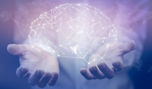 Es nuestro cerebro un ordenador cuántico?