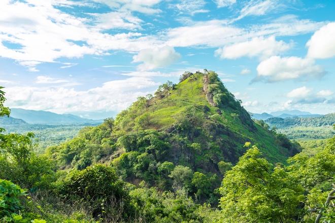 Debido al clima cambiante, las cimas de las montañas florecen
