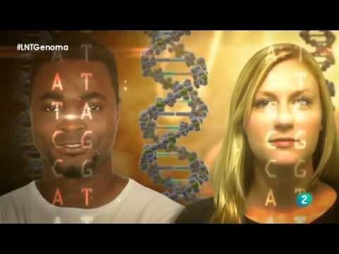 Descifrando nuestro código genético - Documental